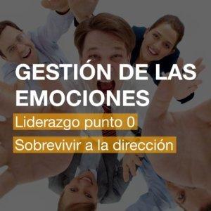 Curso Gestión de las Emociones en Alicante   R&A BUSINESS TRAINING
