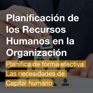 Curso Planificación de los Recursos Humanos en la Organización   R&A BUSINESS TRAINING